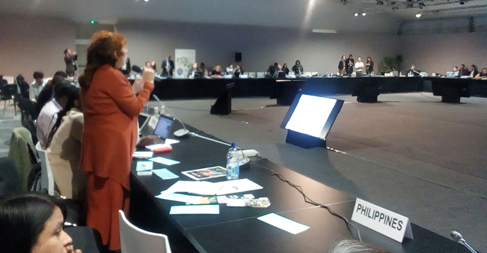 stella-joy-speaks-at-cop22