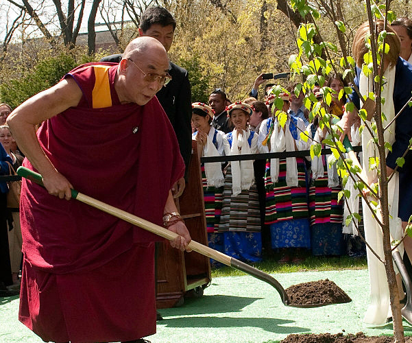 hh-dalai-lama-tree
