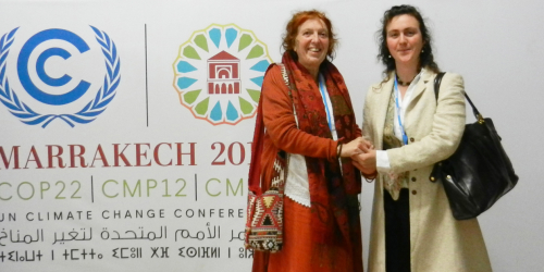 Active Remedy Attended the COP22 Climate Change Conference